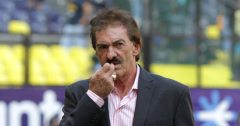 lavolpe