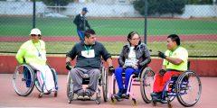 discapacidad-2