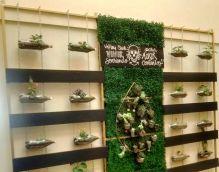 Muros verdes (1)