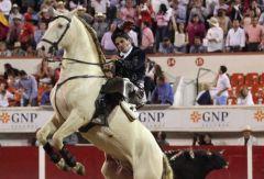 rejoneador-emiliano_gamero-caballo-video-milenio-la_aficion-golpes_MILIMA20170103_0152_30
