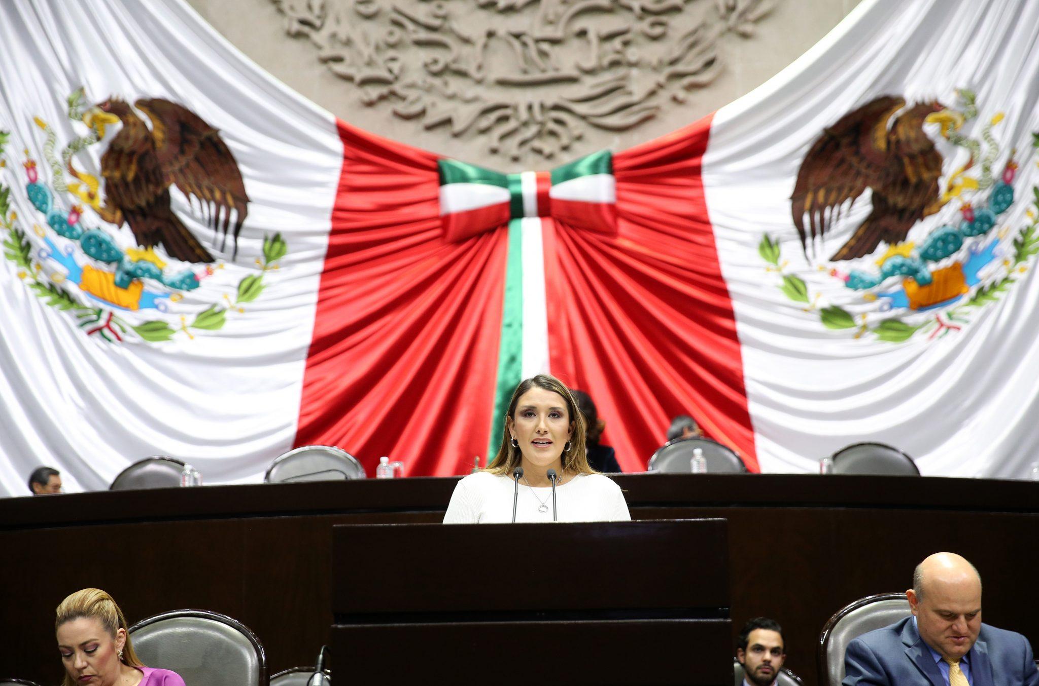 Olga Esquivel Hernández, diputada federal por el Estado de México, aseguró a nombre del Grupo Parlamentario del PRI, que con la aprobación del dictamen por el que la Cámara de Diputados reformó la Ley de Planeación se orienta al diseño de los modelos de desarrollo con un enfoque que busca resultados y una perspectiva de largo plazo