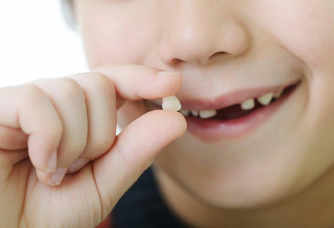 Los dientes de leche de los hijos pueden salvar la vida ¡Guárdelos!