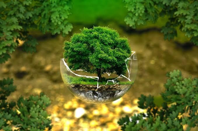 Reitera Toluca compromiso con el medio ambiente